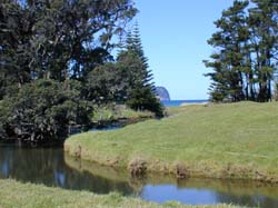 Great Barrier Island Farm